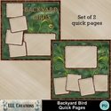 Backyard_birds_quick_pages-01_small