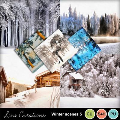 Winterscenes5