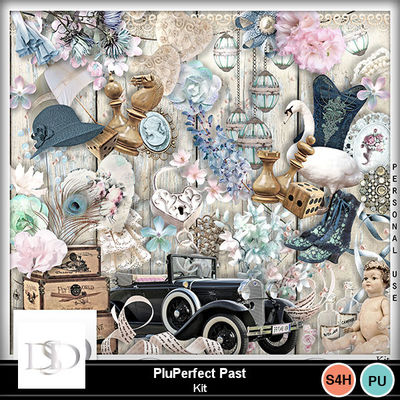 Dsd_pluperfectpast_kit
