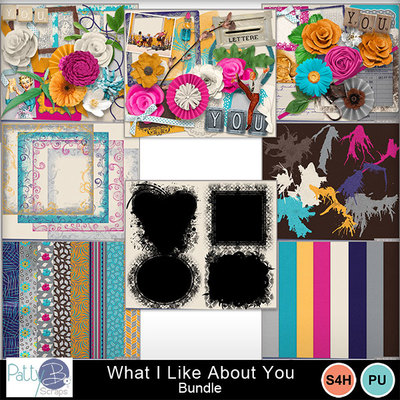Pbs_what_i_like_about_you_bundle
