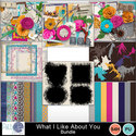 Pbs_what_i_like_about_you_bundle_small