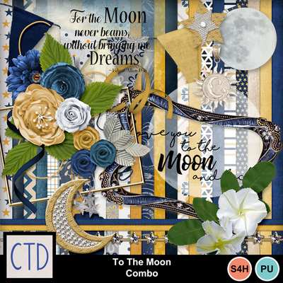 To-the-moon-1