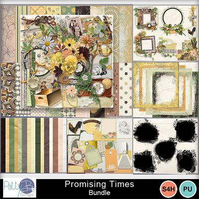 Pbs_promising_times__bundle