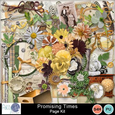 Pbs_promising_times_pkele