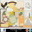 Pbs_promising_times_tags_small