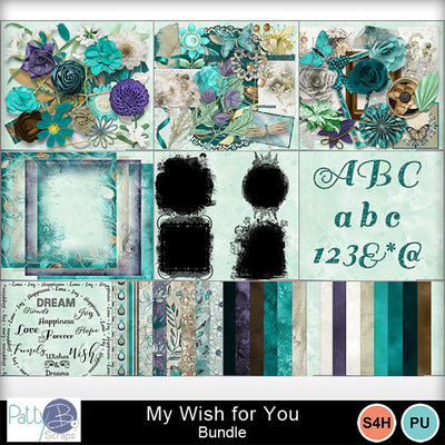 Pbs_my_wish_bundle