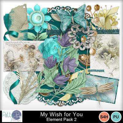 Pbs_my_wish_elements2