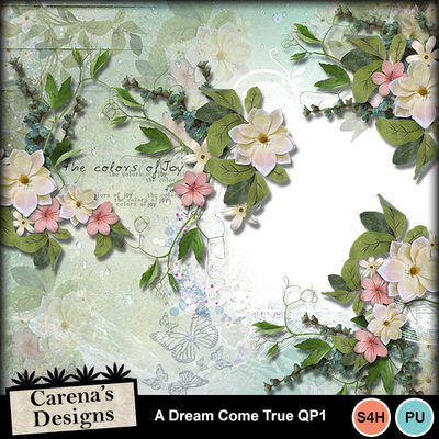 A-dream-come-true-qp1