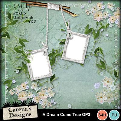 A-dream-come-true-qp3