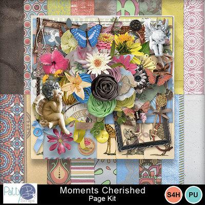 Pbs_moments_cherished_pkall