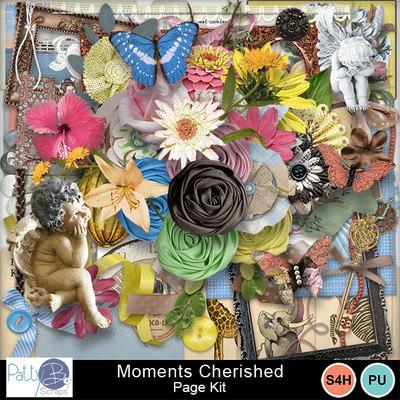 Pbs_moments_cherished_pkele