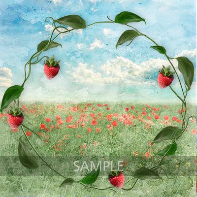 Strawberry_world7
