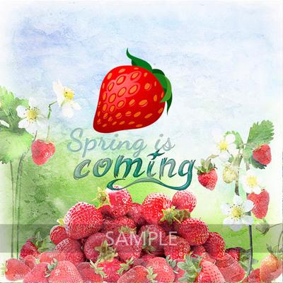 Strawberry_world9