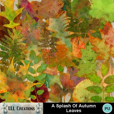 A_splash_of_autumn_leaves-01