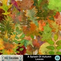 A_splash_of_autumn_leaves-01_small