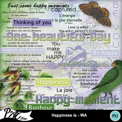 Patsscrap_happiness_is_pv_wa