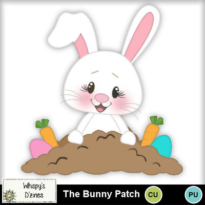 Wdcuthebunnypatchcapv
