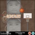 A_basketball_star_temp-001_small