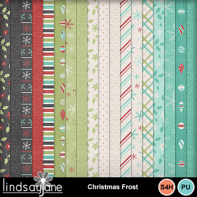 Christmas_frost_2