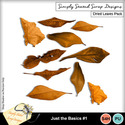 Dried_leaves_mm_small