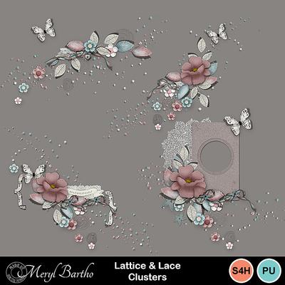 Latticeandlace-clusters