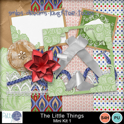 Pbs_the_little_things_mk1all