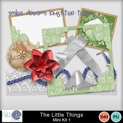 Pbs_the_little_things_mk1ele
