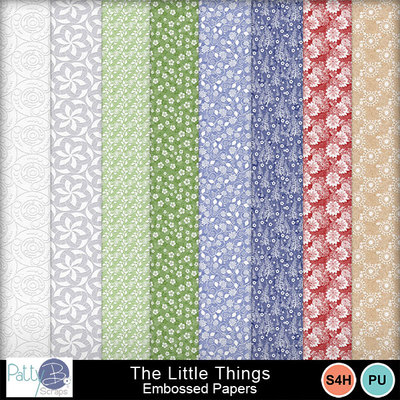 Pbs_the_little_things_embossed