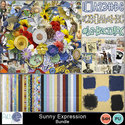 Pbs-sunny-expression-bundle_small