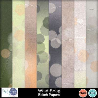 Pbs-wind-song-bokeh-ppr