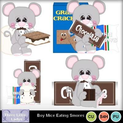 Boy_mice_eating_smores