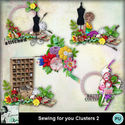 Louisel_sewing_for_you_clusters2_preview_small