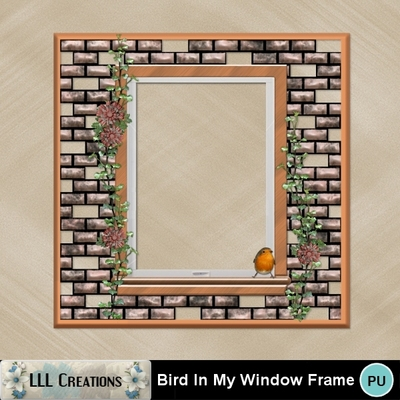 Bird_in_my_window_frame-01