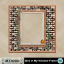 Bird_in_my_window_frame-01_small