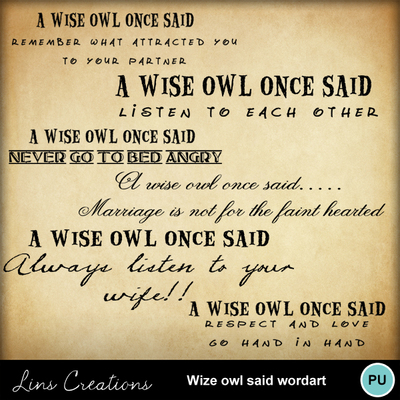 A_wise_owl_said