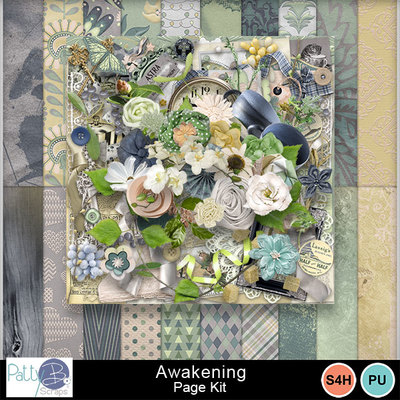 Pbs_awakening_pkall_prev
