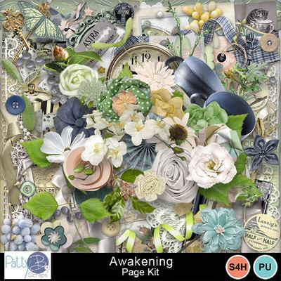 Pbs_awakening_pkele_prev