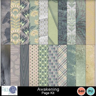 Pbs_awakening_pkppr_prev