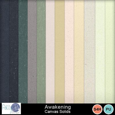 Pbs_awakening_canvas_solids_prev