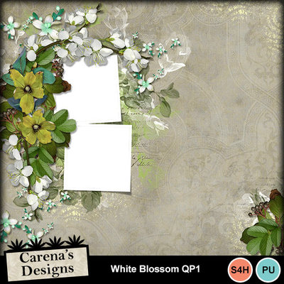 White-blossom-qp1
