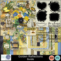 Pbs_golden_reflections__bundle_prev_small