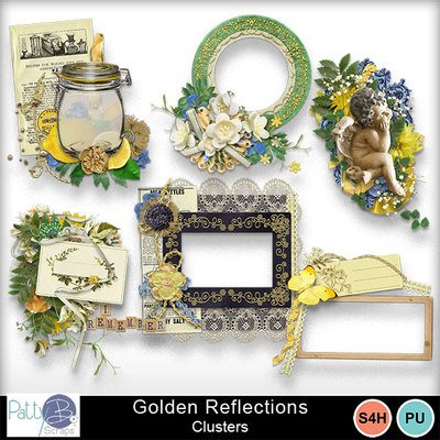Pbs_golden_reflections_clusters_prev