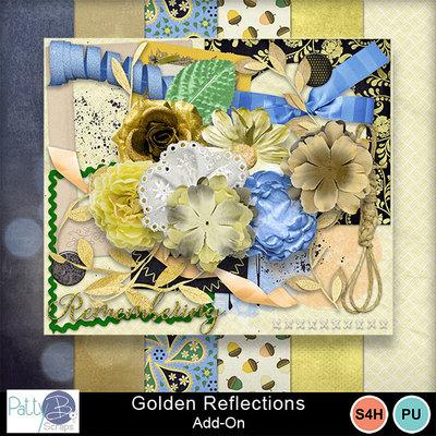 Pbs_golden_reflections_aoall
