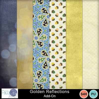 Pbs_golden_reflections_aoppr