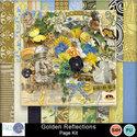 Pbs_golden_reflections_pkall_prev_small