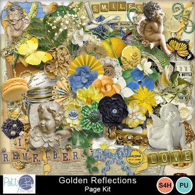 Pbs_golden_reflections_pkele_prev