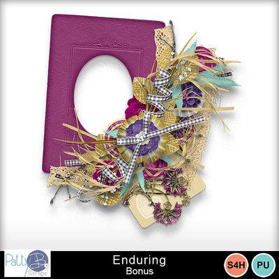 Pbs_enduring_bundle_bonus_prev