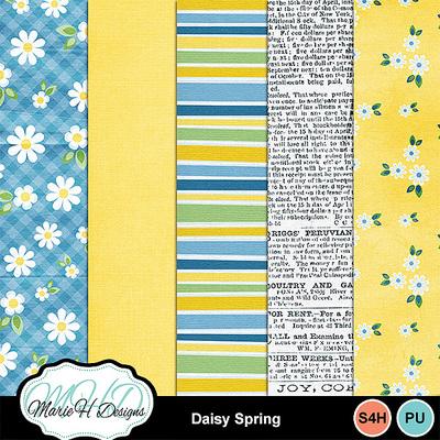 Daisy_spring_02