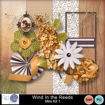 Pbs_wind_in_the_reeds_mk1all_prev