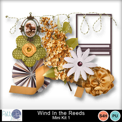 Pbs_wind_in_the_reeds_mk1ele_prev